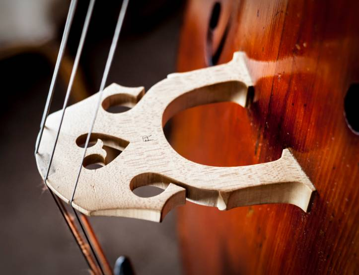 Close up of a double bass